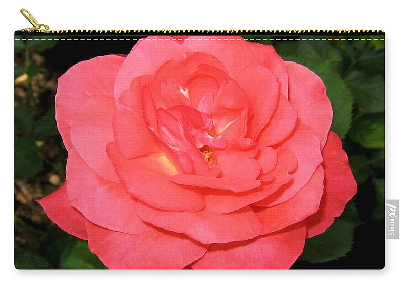 Rose Carry-all Pouch featuring the photograph Roses 3 by Will Borden