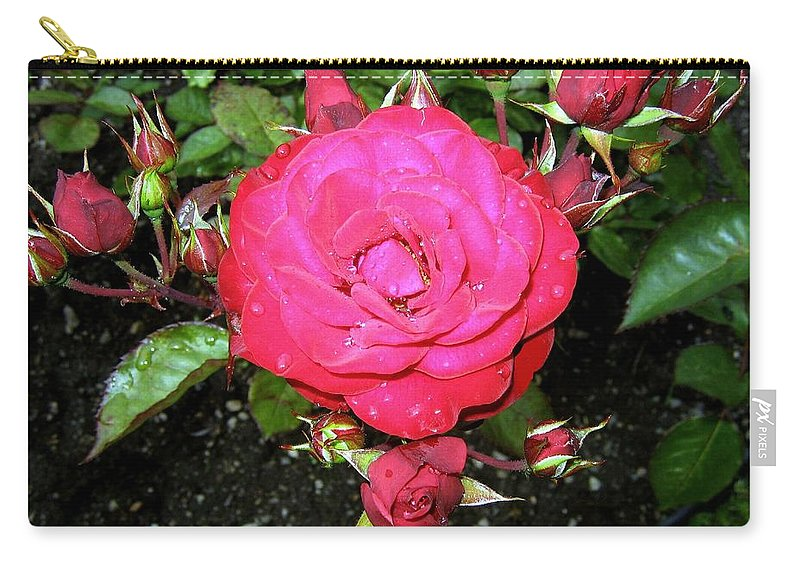 Rose Carry-all Pouch featuring the photograph Roses 5 by Will Borden