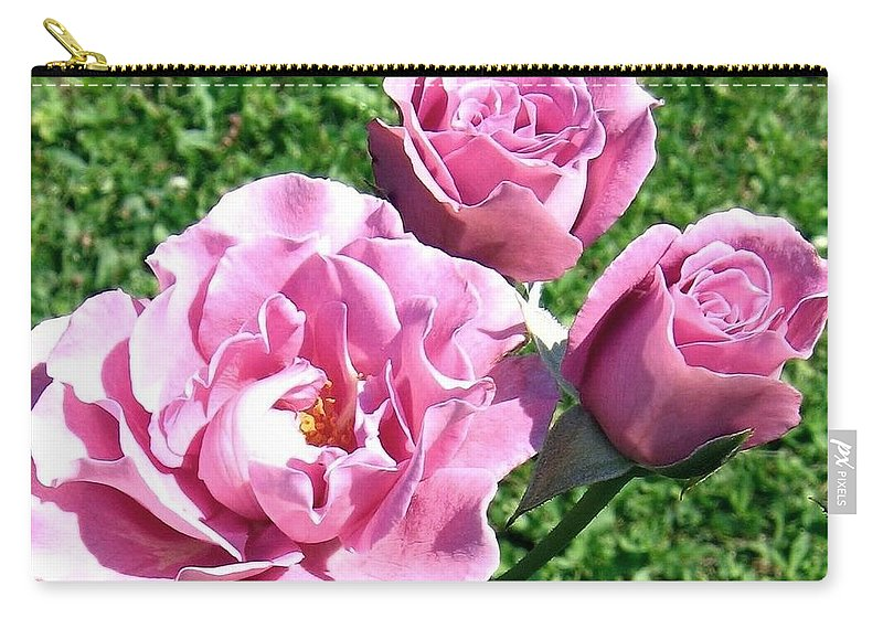 Roses Carry-all Pouch featuring the photograph Roses 6 by Will Borden
