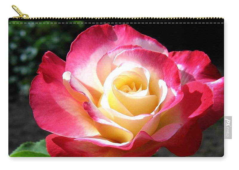 Rose Carry-all Pouch featuring the photograph Roses 7 by Will Borden