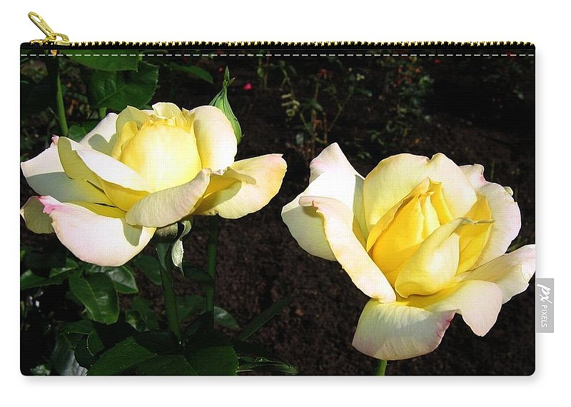 Roses Carry-all Pouch featuring the photograph Roses 8 by Will Borden