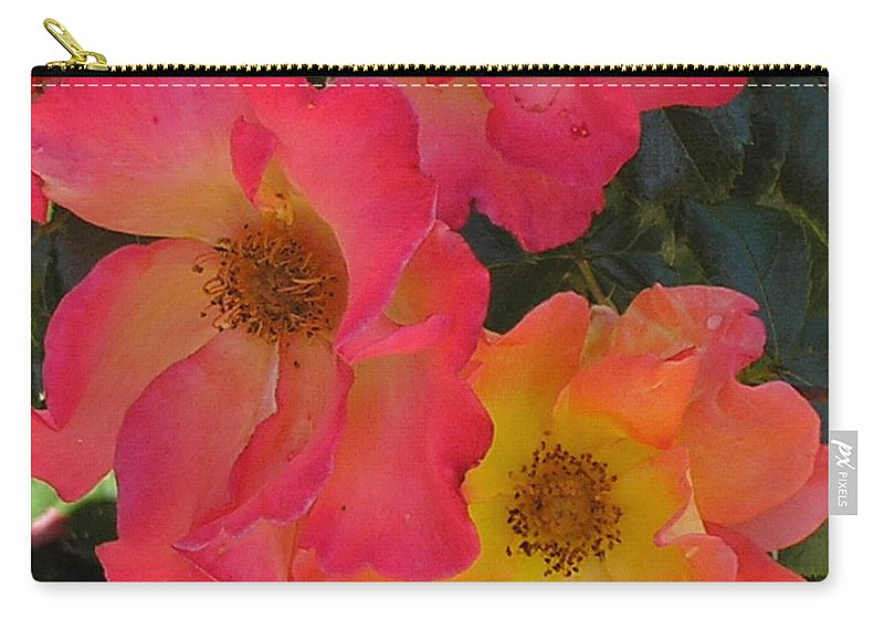 Rose Carry-all Pouch featuring the photograph Roses by Dean Triolo