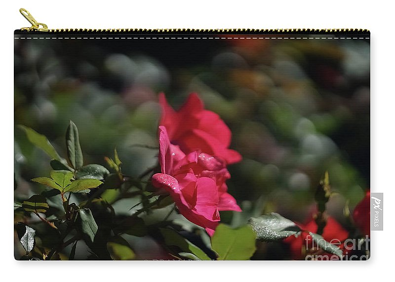 Outdoors Carry-all Pouch featuring the photograph Roses In The Wind by Maria Costello