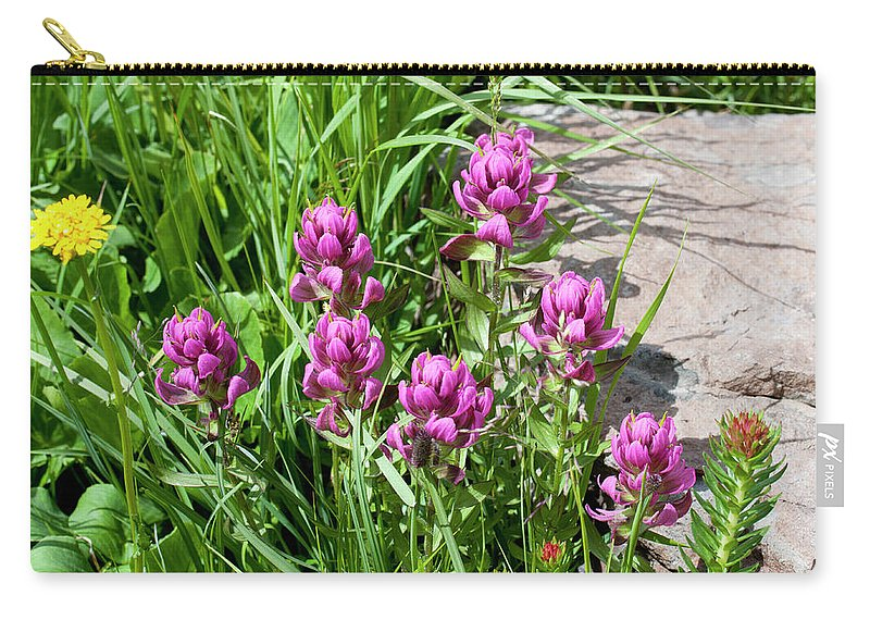 Colorado Carry-all Pouch featuring the photograph Rosy Wildflowers by Julia McHugh