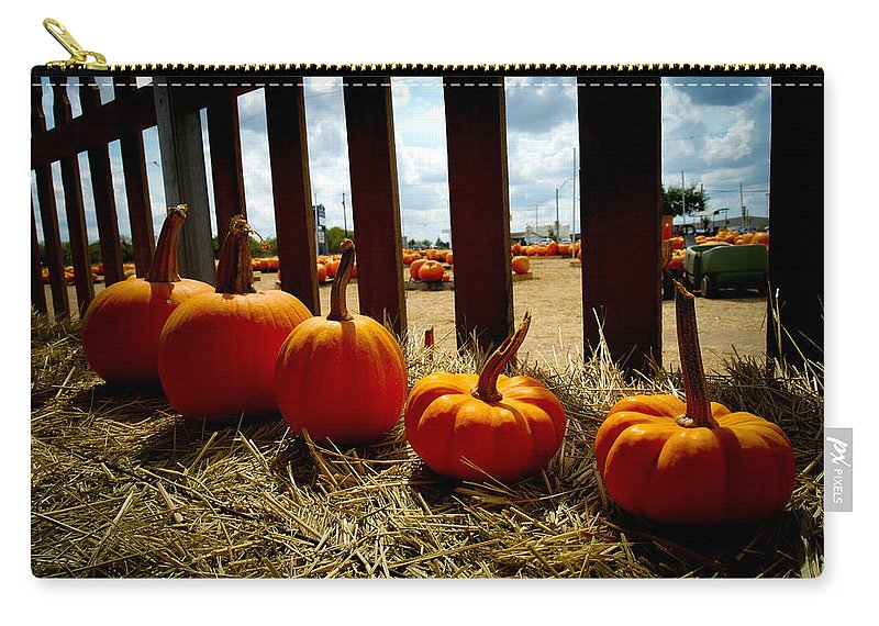 Pumpkin Carry-all Pouch featuring the photograph Row Of Pumpkins Sitting by Marisela Mungia