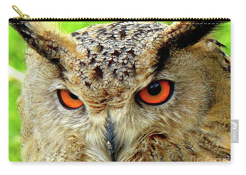 Owls Carry-all Pouch featuring the photograph Royal Owl by Carlos Amaro