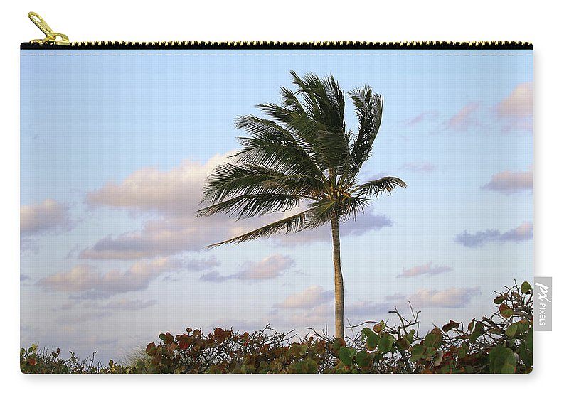 Royal Palm Tree Carry-all Pouch featuring the photograph Royal Palm Tree by Art Block Collections