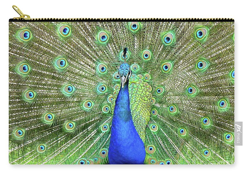 Peackock Carry-all Pouch featuring the photograph Royal Peacock by Carlos Amaro