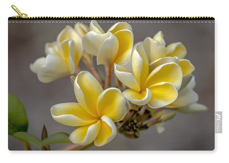 Flower Of The Day Carry-all Pouch featuring the photograph Royal Yellow Plumerias by Jade Moon
