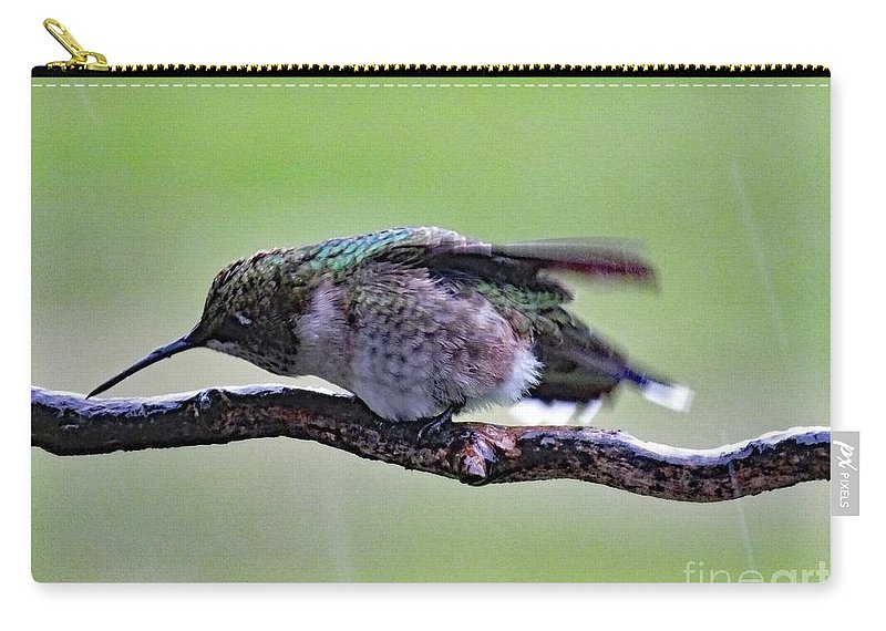 Ruby-throated Hummingbird Carry-all Pouch featuring the photograph Rubbing Its Bill - Ruby-throated Hummingbird by Cindy Treger