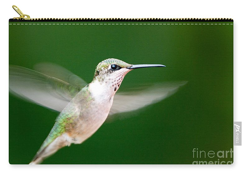Bird Carry-all Pouch featuring the photograph Ruby Throated Hummingbird by John Harmon