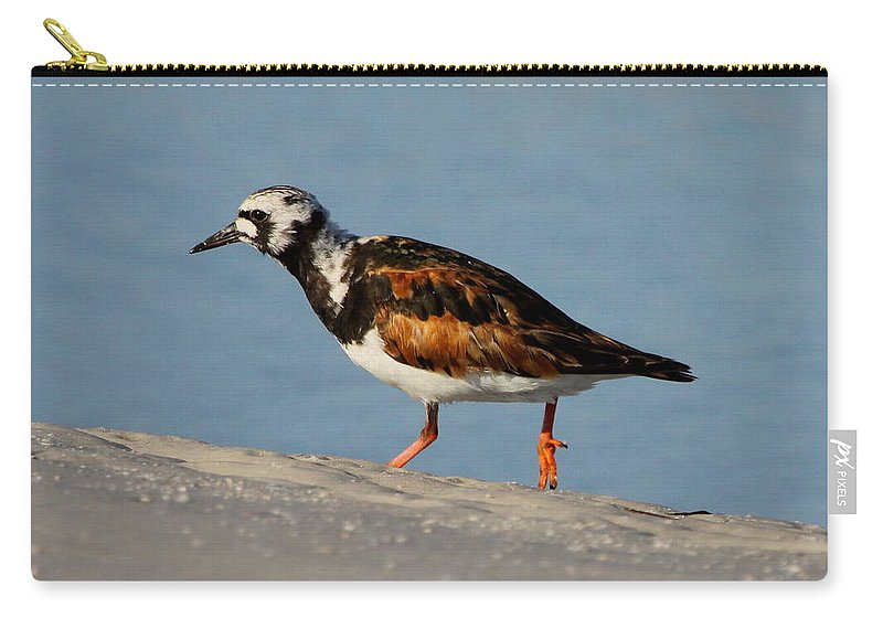 Ruddy Turnstone Carry-all Pouch featuring the photograph Ruddy Turnstone by Barbara Bowen
