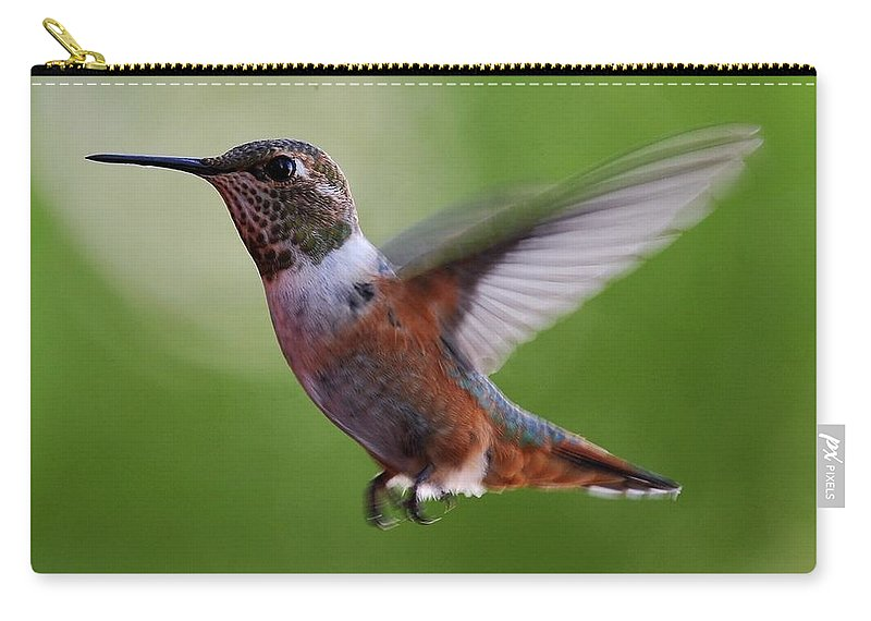Hummingbirds Carry-all Pouch featuring the photograph Rufus Hummingbird In Flight by Heidi Fickinger