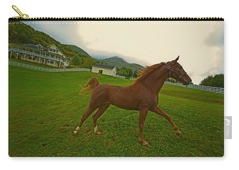 Landscape Carry-all Pouch featuring the photograph Running Free by Dennis Baswell