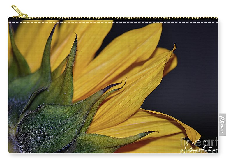 Sunflower Carry-all Pouch featuring the photograph Rustic Elegance by Lisa Renee Ludlum