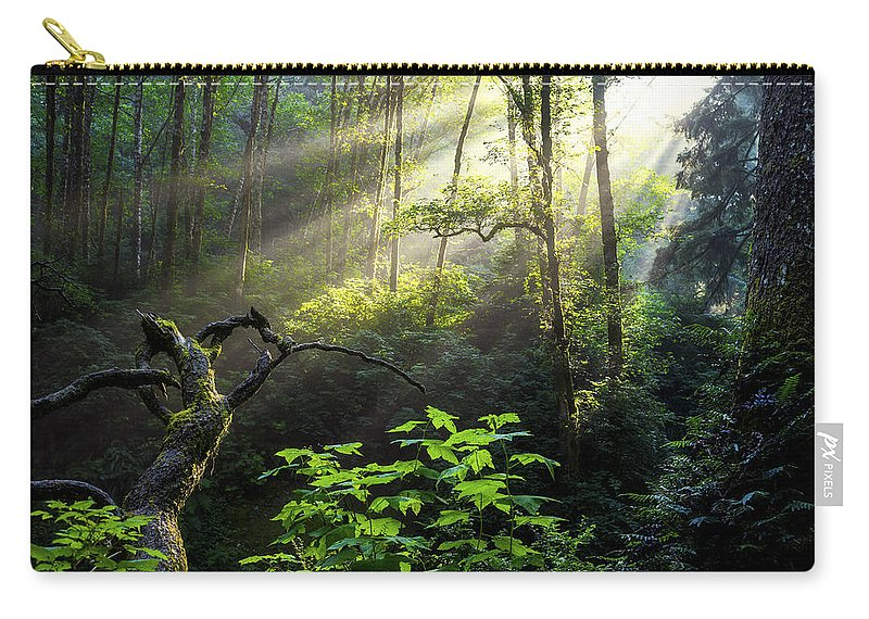 Light Carry-all Pouch featuring the photograph Sacred Light by Chad Dutson
