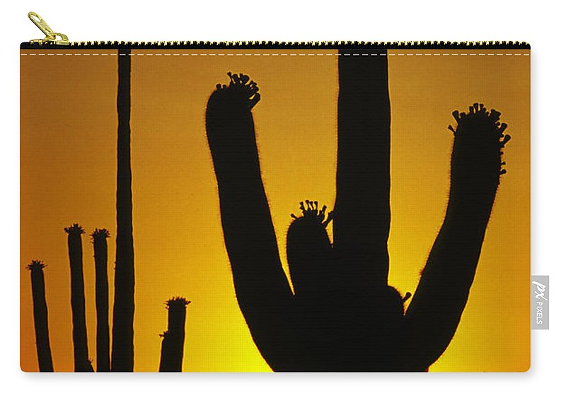 Southwest Carry-all Pouch featuring the photograph Saguaro Sunset by Sandra Bronstein