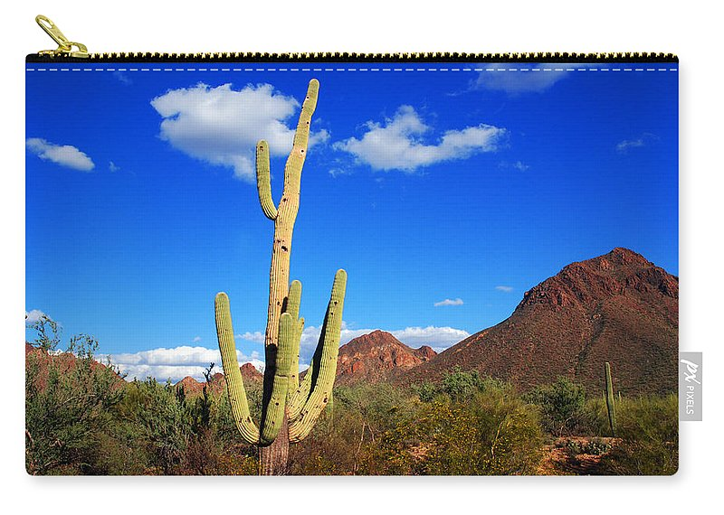 Photography Carry-all Pouch featuring the photograph Saguaro Tree by Susanne Van Hulst