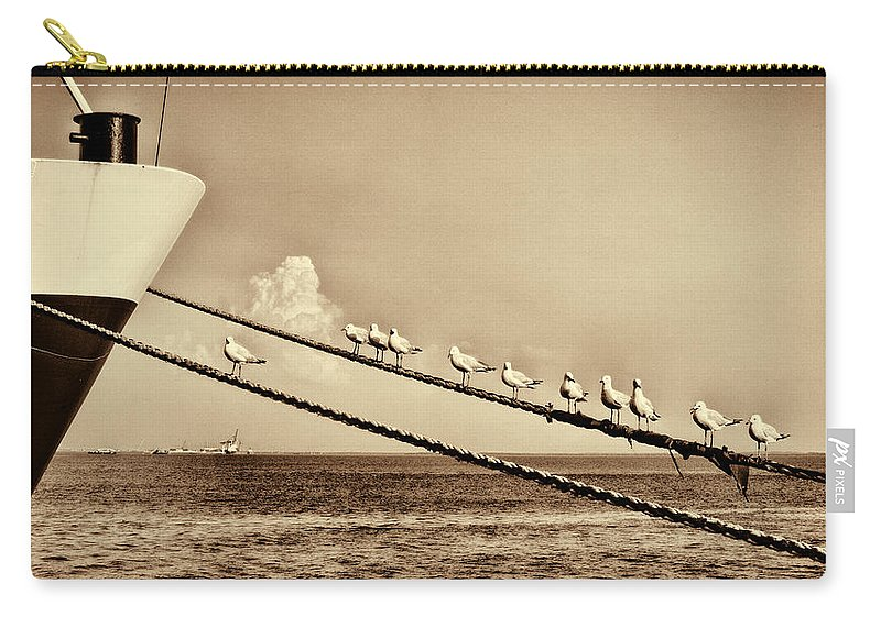 Seagulls Carry-all Pouch featuring the photograph Sailors V2 by Douglas Barnard