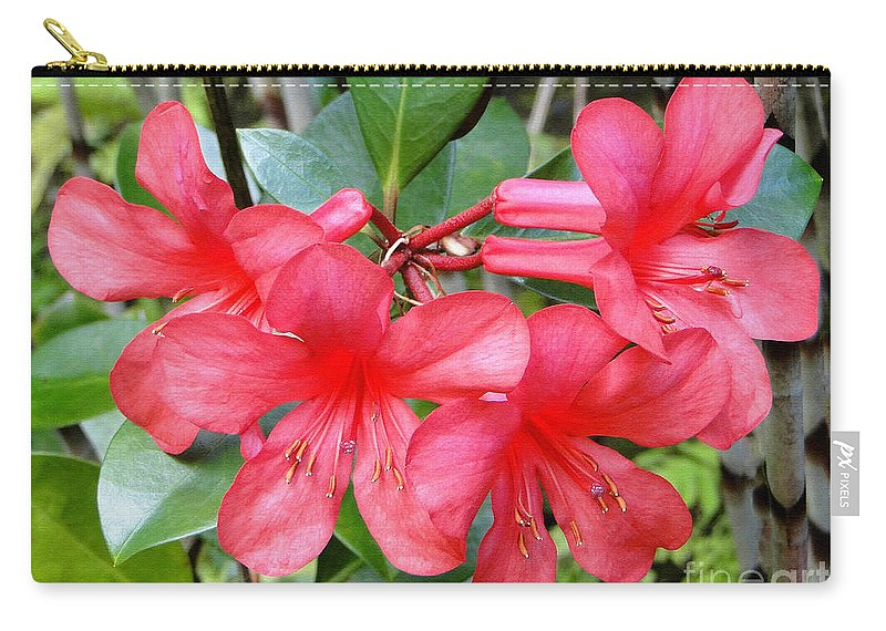 Flower Carry-all Pouch featuring the photograph Salmon Pink In The Tropics by Sue Melvin
