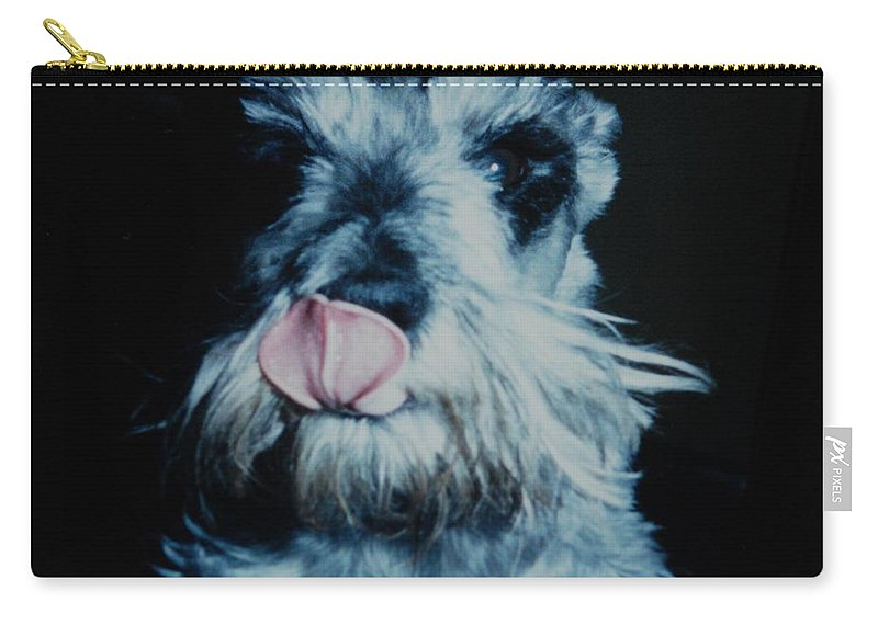 Dogs Carry-all Pouch featuring the photograph Sam The Fat Cow by Rob Hans