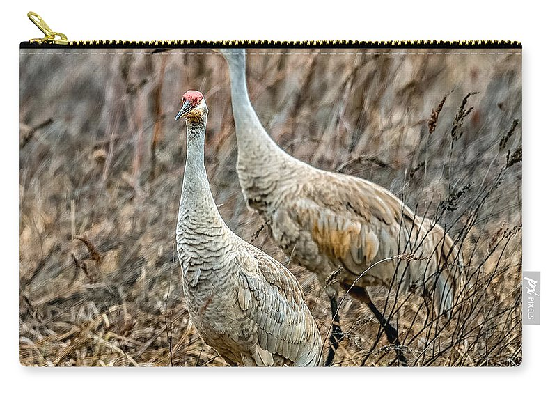 Crane Carry-all Pouch featuring the photograph Sand Hill Crane Pair by Paul Freidlund