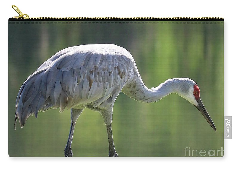 Bird Carry-all Pouch featuring the photograph Sandhill And Green Pond by Carol Groenen