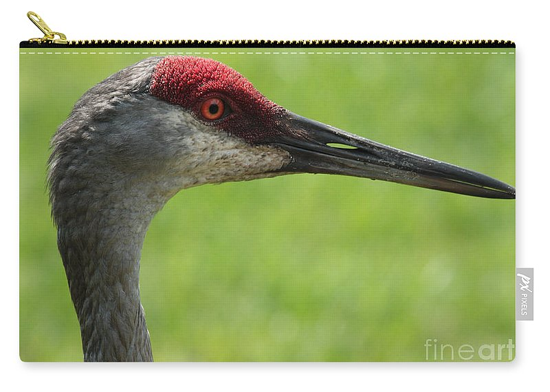Sandhill Crane Carry-all Pouch featuring the photograph Sandhill Crane Profile by Carol Groenen