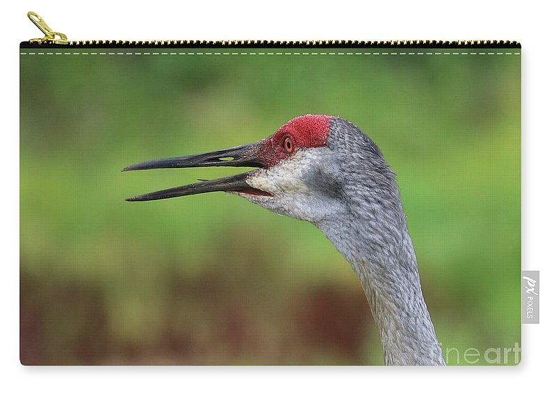 Sandhill Crane Carry-all Pouch featuring the photograph Sandhill Song by Carol Groenen
