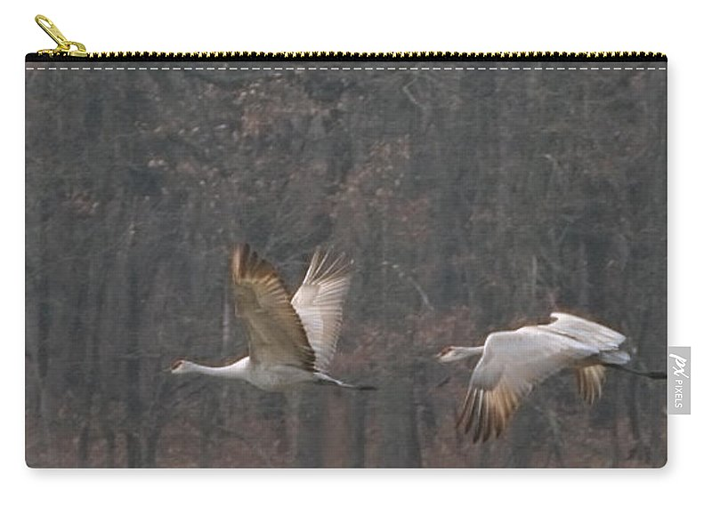 Birds Sandhills Migratory Migration Flight Flying Route Wildlife Nature Birds Carry-all Pouch featuring the photograph Sandhills In Flight by Shari Jardina
