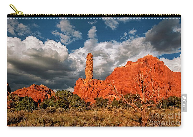 North America Carry-all Pouch featuring the photograph Sandpipe Formations Kodachrome Basin State Park Utah by Dave Welling