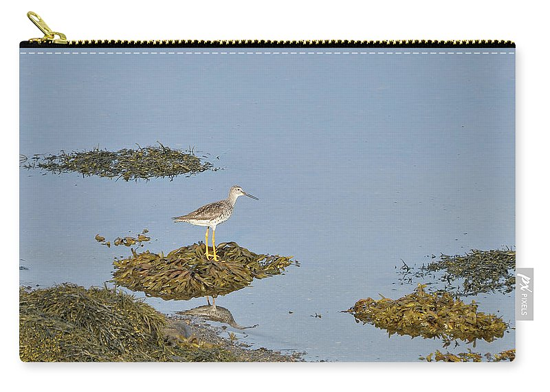 Sandpiper Carry-all Pouch featuring the photograph Sandpiper On Stilts by Colleen English