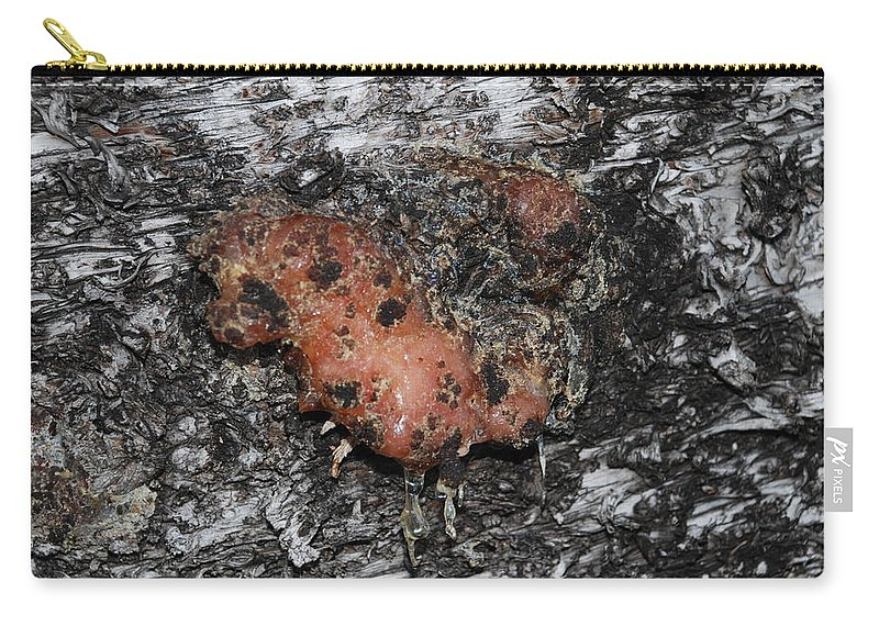 Sap Carry-all Pouch featuring the photograph Sap Of The Tree by Rob Hans