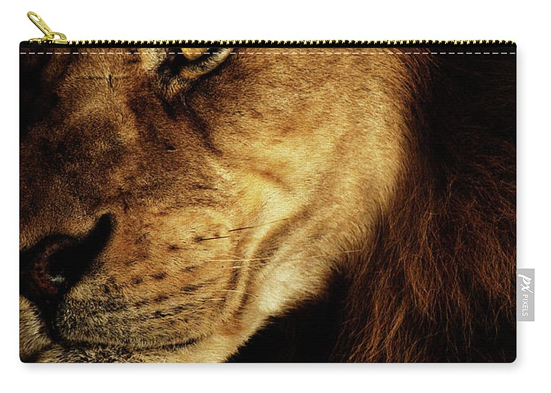 Lion Carry-all Pouch featuring the photograph Savage by Andrew Paranavitana
