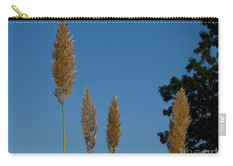Patzer Carry-all Pouch featuring the photograph Sawgrass Blooms by Greg Patzer