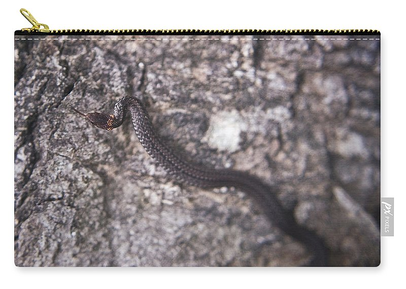 Cove Carry-all Pouch featuring the photograph Scared Barter Snake by Douglas Barnett