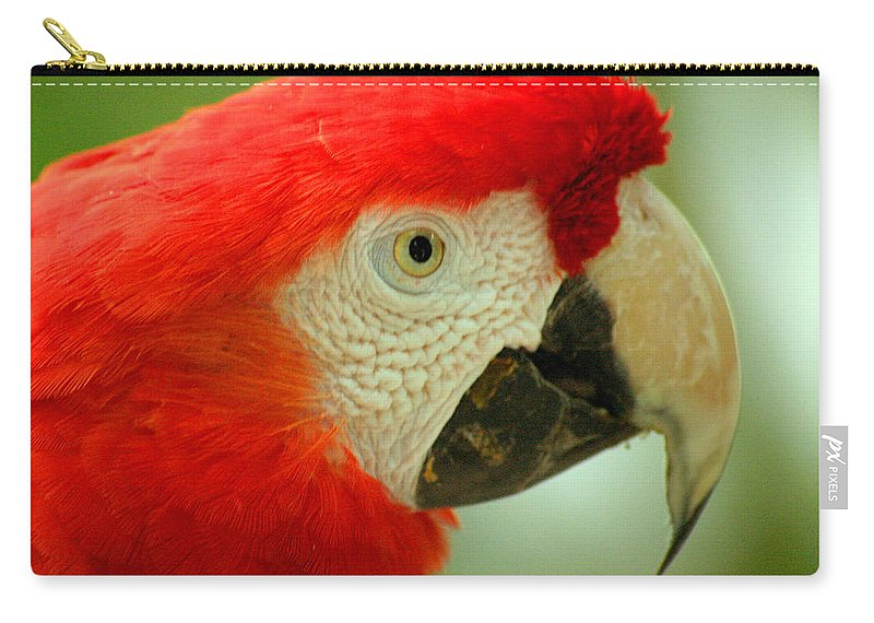 Parrot Carry-all Pouch featuring the photograph Scarlett Macaw South America by Ralph A Ledergerber-Photography