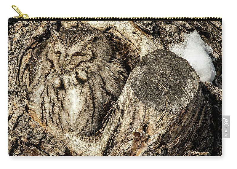 Animal Carry-all Pouch featuring the photograph Screech Owl In Cavity Nest by Dawn Key