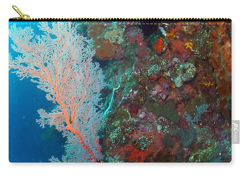 Carry-all Pouch featuring the photograph Sea Fan by Todd Hummel