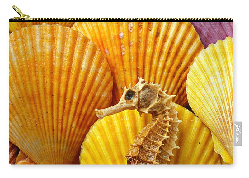 Seahorse Carry-all Pouch featuring the photograph Sea Horse And Sea Shells by Garry Gay