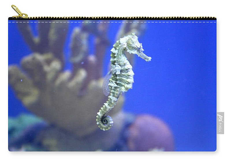 Carry-all Pouch featuring the photograph Sea Horse by Teresa Doran
