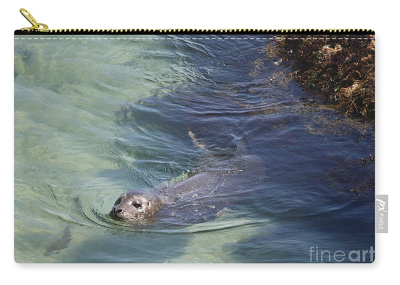 Sea Lion Carry-all Pouch featuring the photograph Sea Lion In Clear Blue Waters by Carol Groenen