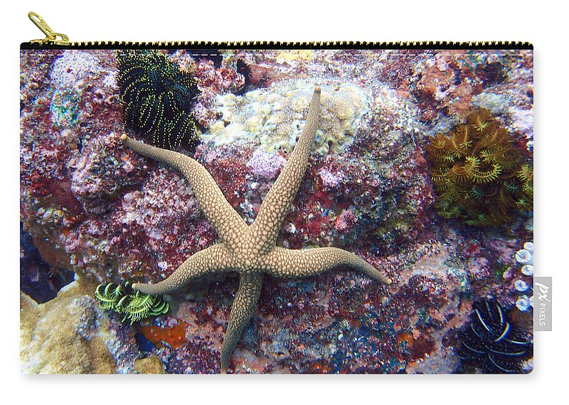 Carry-all Pouch featuring the photograph Sea Star by Todd Hummel