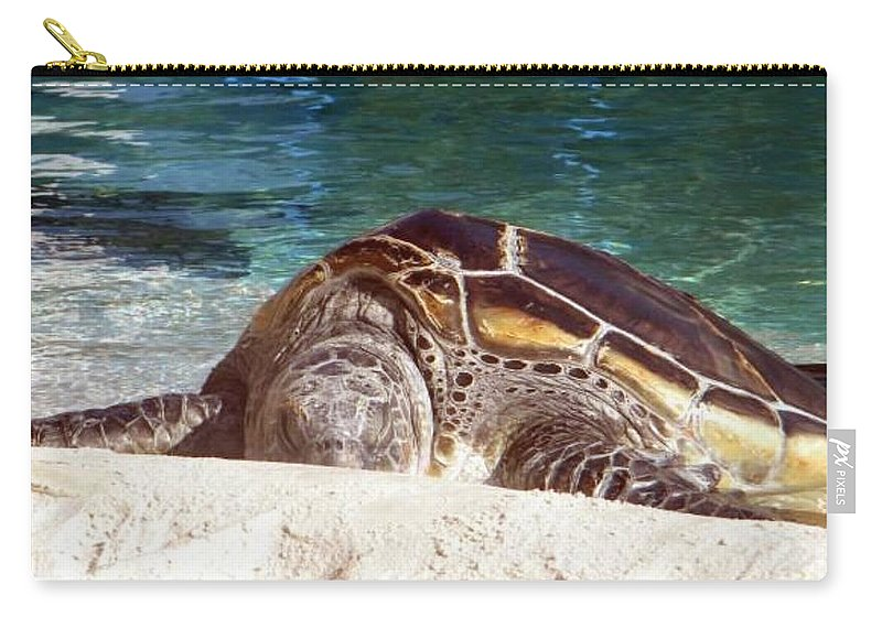 Sea Turtle Carry-all Pouch featuring the photograph Sea Turtle Resting by Amanda Eberly-Kudamik