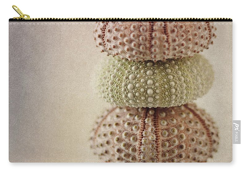 Shell Carry-all Pouch featuring the photograph Sea Urchins by Carol Leigh