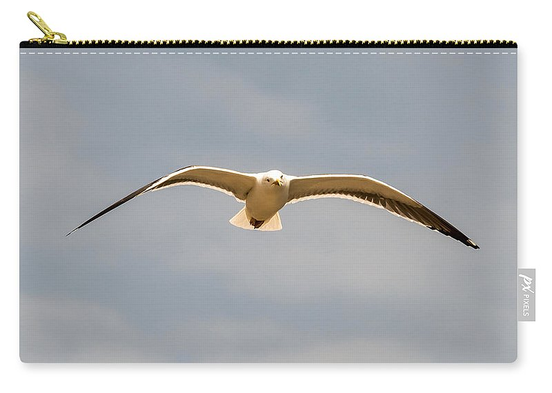 Bristol Carry-all Pouch featuring the photograph Seabird 01 by Jacek Wojnarowski