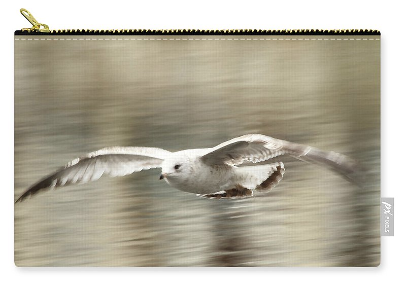 Seagull Carry-all Pouch featuring the photograph Seagull Glide by Karol Livote