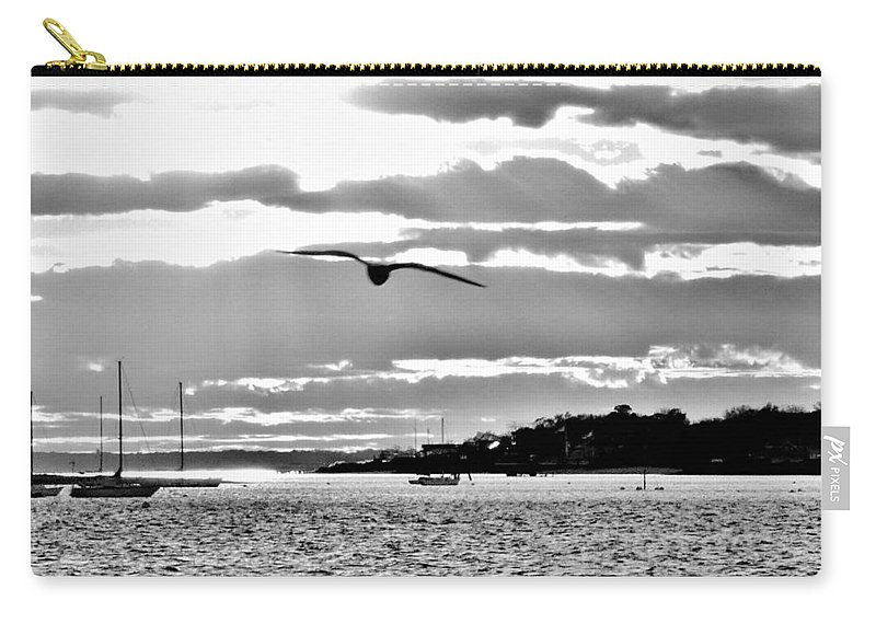 Seagull In Flight Carry-all Pouch featuring the photograph Seagull In Flight by Thomas Patrick Higgins
