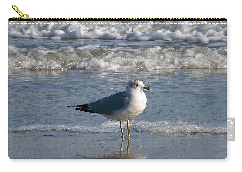 Seagull Carry-all Pouch featuring the photograph Seagull by Kathy Shoemaker
