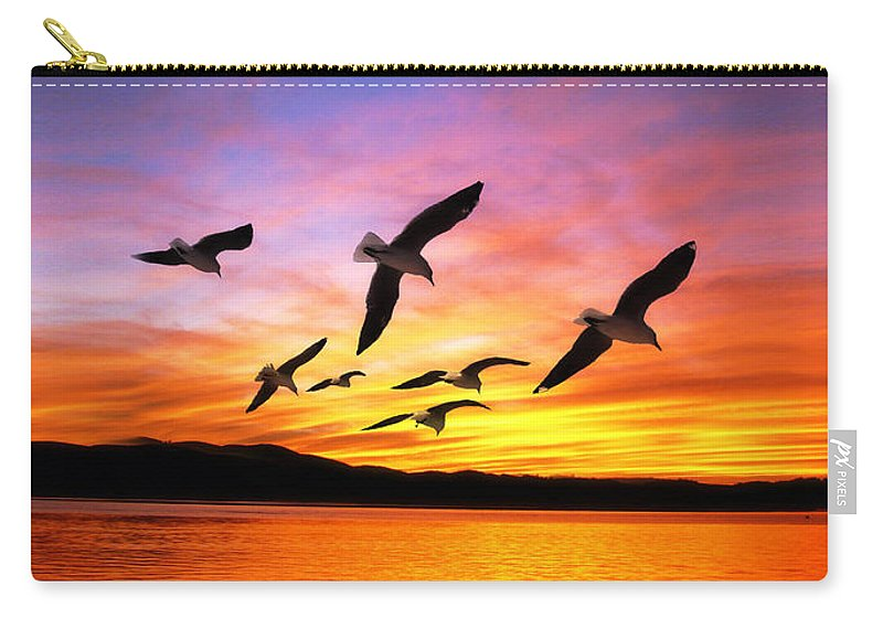 Seagulls Carry-all Pouch featuring the photograph Seagull Sunset  by Gravityx Designs